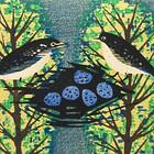 s.takagi nesting-3.jpg