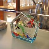 aquarium_murano.JPG