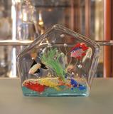 aquarium_murano1.JPG