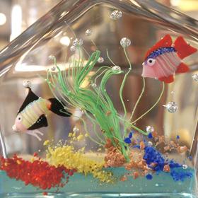 aquarium_murano6.JPG