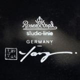 rosenthal_yang_plate4.JPG