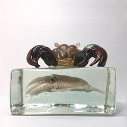 alfred_barbini_glass_crab_squid3.jpeg