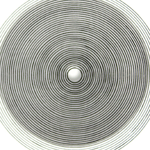 Wilding「Spiral」