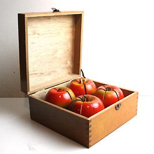 昭和29年 りんごの分数説明器