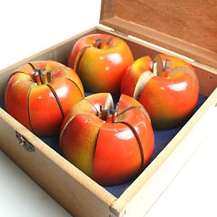 昭和29年の学校教材 りんごの分数説明器