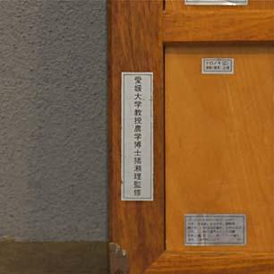 愛媛大学 猪瀬 理 博士監修「日本・外国・熱帯産主要木材」パネル3点セット